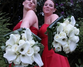 Brides bouquets of Crystal blush calla lilies, roses and curled aspidistra leaves